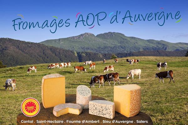 Route des fromages AOP d'Auvergne
