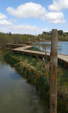 MAISON DE SITE D'ARJUZANX Site naturel (avec horaires et-ou payant) Arjuzanx photo n° 218621