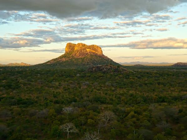 Niassa Mozambique - ©Niassa Carnivore Project