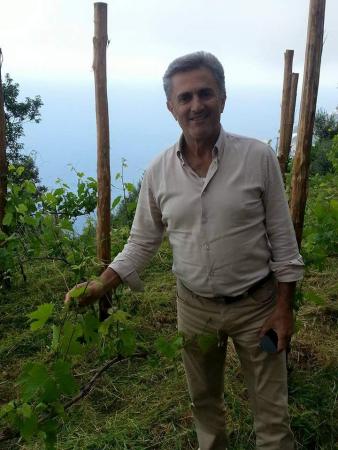 MARISA CUOMO Agriculture – Viticulture Furore photo n° 334518 - ©MARISA CUOMO