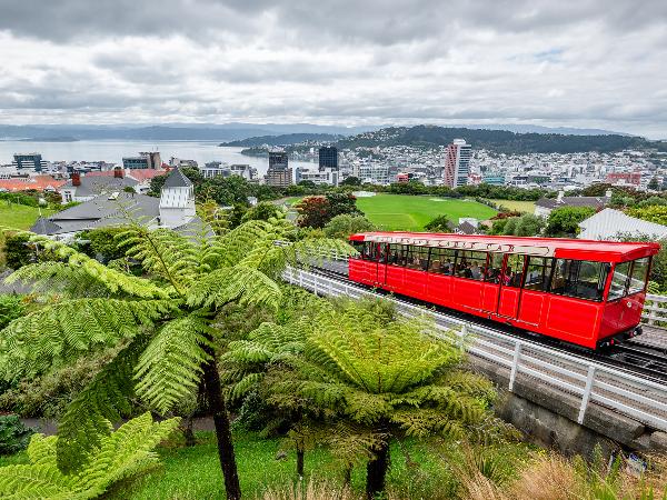 Wellington - Capitale de la Nouvelle-Zélande - ©Yoann Feillet