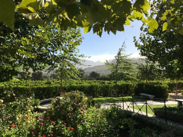 Winefarm