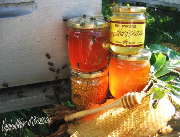 apiculteur d'itxassou