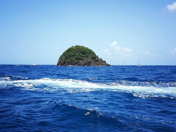 Mer Et Nature Loisirs Et Sports Nautiques Les Trois îlets 97229