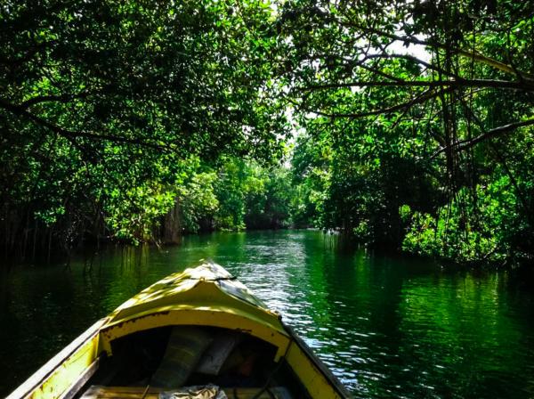 Black River Safari - ©LATITUDE JAMAICA
