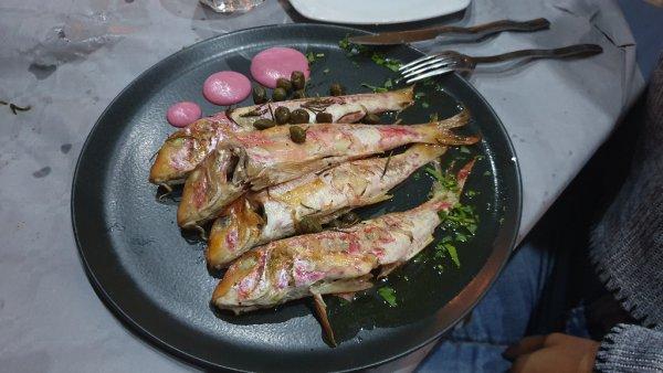 poisson - ©ZEFIROS ANEMOS