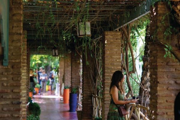 Jardin Majorelle Parcs Et Jardins Marrakech