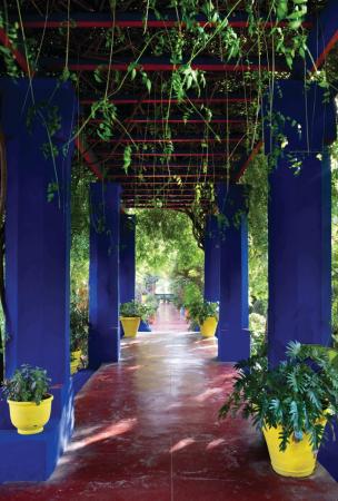 Jardin Majorelle...
