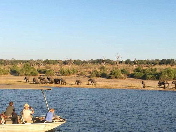 furahah safaris