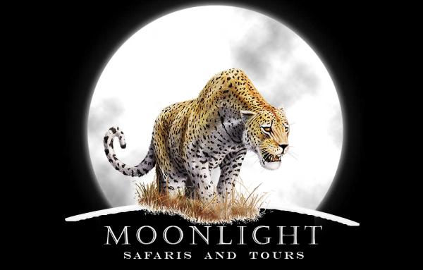 the logo itself - ©MOONLIGHT SAFARIS