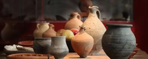 MUSEE DE VIEUX LA ROMAINE