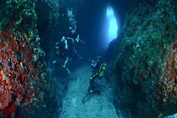 Dsc Plongee Diving Snorkeling Le Diamant 97223
