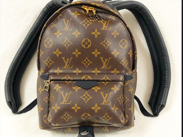 Maison Louis Vuitton Modèle Backpack PM (ou Palm Springs PM) - ©Oplus
