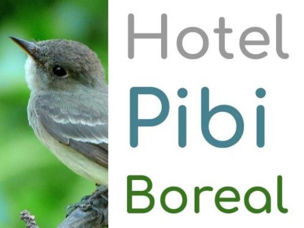 Pibi Boreal Logo 530x530 - ©@pibiboreal