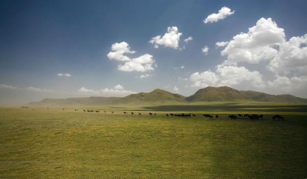 Serengeti - ©TANZANIA SPECIALIST