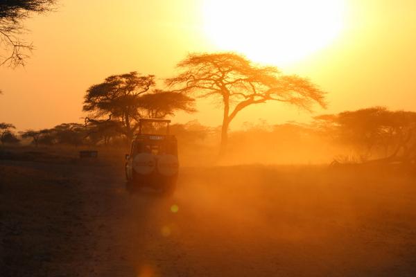 Tanzania specialist - ©TANZANIA SPECIALIST