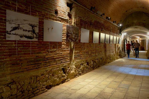 ESPACE EDF BAZACLE Musée spécialisé (musée de La Poste…) Toulouse photo n° 35685