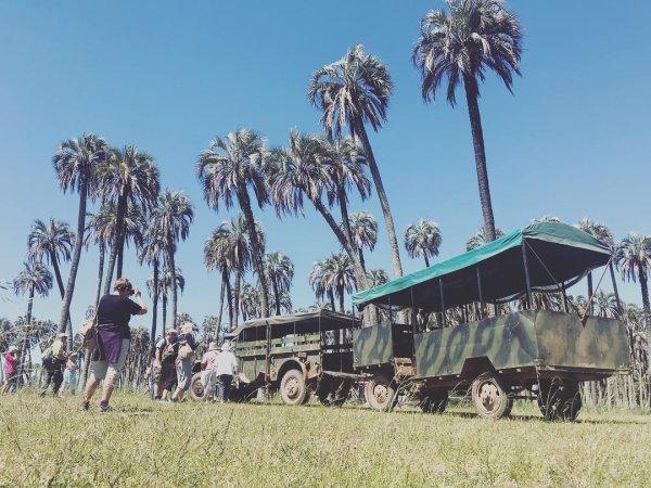 El Palmar Argentine - ©SOUTHERN EXPERIENCE VIAJES EVT