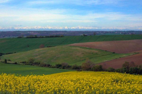Vue depuis le GR46 : Conques-Toulouse , Chemin de Saint-Jacques de Compostelle par les Coteaux du Girou - ©Tourisme Coteaux du Girou