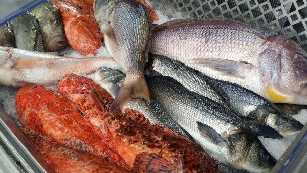 L'ESPLAI DU GRAND BAR DES GOUDES Restaurant fruits de mer – Poissons Marseille photo n° 376394 - ©L'ESPLAI DU GRAND BAR DES GOUDES