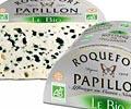 PAPILLON Aveyron Roquefort-sur-Soulzon photo n° 87833 - ©PAPILLON