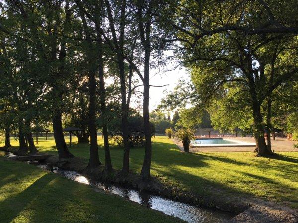 La piscine - ©LE CHÂTEAU DES ALPILLES
