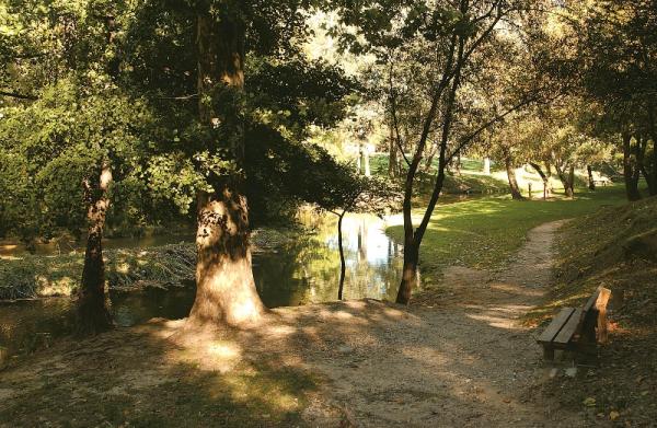 OFFICE DE TOURISME INTERCOMMUNAL VENTOUX PROVENCE Visites - Points d'intérêt Carpentras photo n° 223907