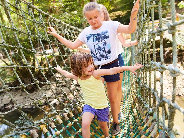 Pont de Singe Parc de Pierre-Brune - ©pont-de-singe-parc-de-pierre-brune