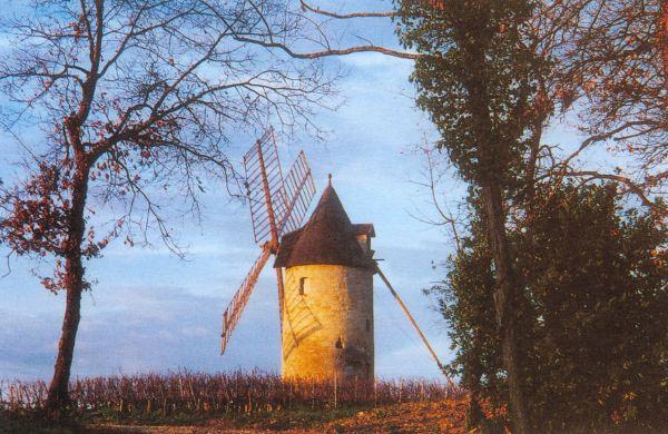CHÂTEAU CORBIN MICHOTTE Produits gourmands - Vins Saint-Emilion photo n° 143645