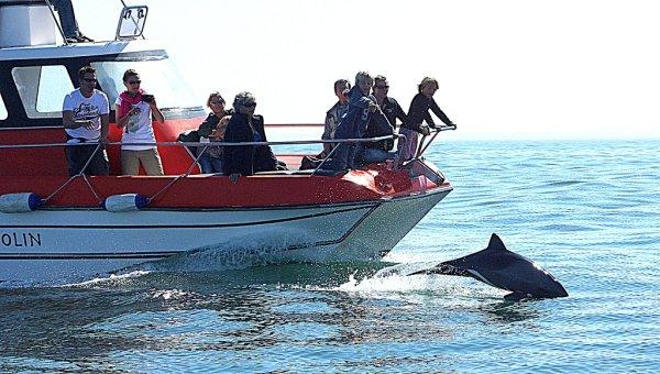 MOLA-MOLA Loisirs et sports nautiques Walvis Bay photo n° 152081 - ©MOLA-MOLA