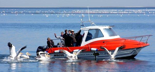 MOLA-MOLA Loisirs et sports nautiques Walvis Bay photo n° 152085 - ©MOLA-MOLA