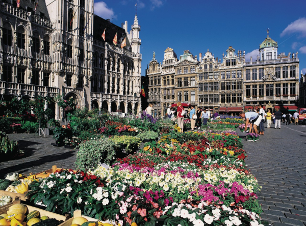 Grand place rue place quartier bruxelles brussel - Office de tourisme bruxelles grand place ...