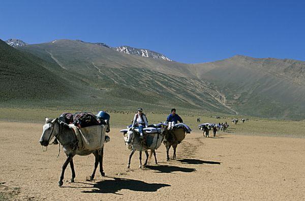 AVENTURE BERBÈRE Voyage - Transports Marrakech photo n° 65087