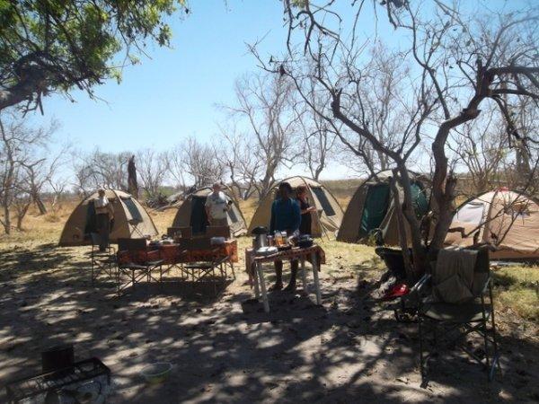 KGATO SAFARIS Agence de voyage - Tours opérateurs Maun photo n° 221118