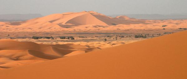 DÉSERT ET MONTAGNE Agence de voyage - Tours opérateurs Ouarzazate photo n° 162993 - ©DÉSERT ET MONTAGNE