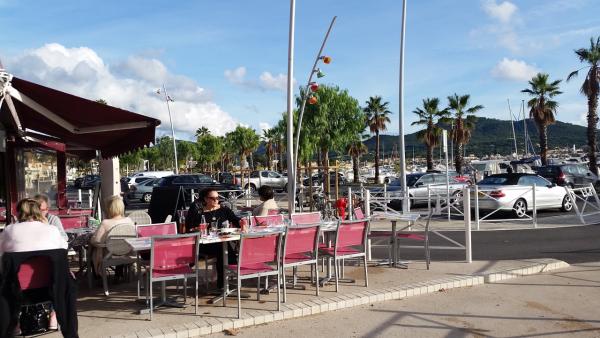 Chaises et palmiers - ©LA RIVIERA DEI FIORI