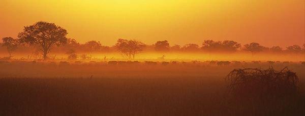 NAMIBIA WILDLIFE RESORTS Office de tourisme Swakopmund photo n° 68878 - ©NAMIBIA WILDLIFE RESORTS