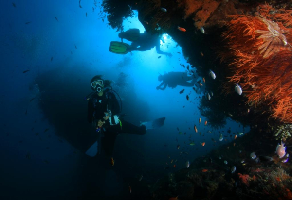DUNE ATLANTIS INTERNATIONAL Plongée – Apnée Sanur photo n° 215240 - ©DUNE ATLANTIS INTERNATIONAL