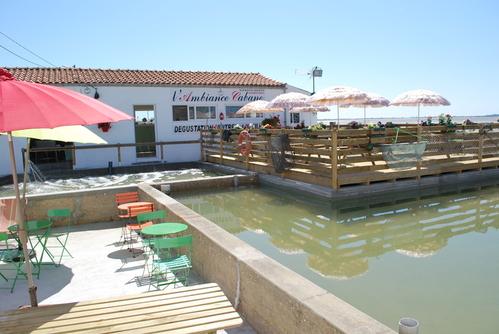 L'AMBIANCE CABANE Restaurant fruits de mer – Poissons Châtelaillon-Plage photo n° 111559 - ©L'AMBIANCE CABANE