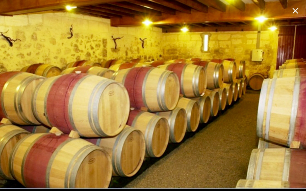 CHÂTEAU LA GALIANE Caves – Maisons des vins Margaux photo n° 212809 - ©CHÂTEAU LA GALIANE