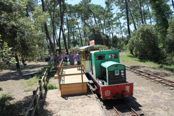 LE P'TIT TRAIN DE SAINT-TROJAN Bus – Petit train Saint-Trojan-les-Bains photo n° 207101 - ©LE P'TIT TRAIN DE SAINT-TROJAN
