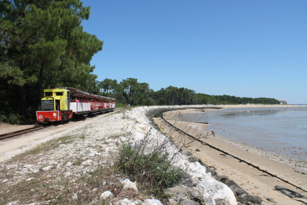 LE P'TIT TRAIN DE SAINT-TROJAN Bus – Petit train Saint-Trojan-les-Bains photo n° 207099 - ©LE P'TIT TRAIN DE SAINT-TROJAN
