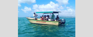 LE MANTOU EXCURSION MANGROVE