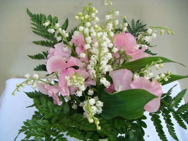 MARC POSTULKA Fleurs – Plantes Bordeaux photo n° 66575 - ©MARC POSTULKA