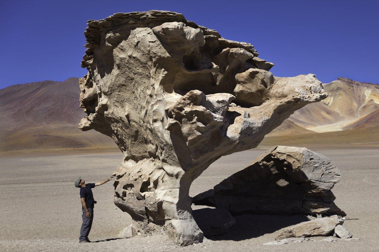 2-bolivie-piment-arbol-de-piedra-stone-tree-c-nicolamargaret