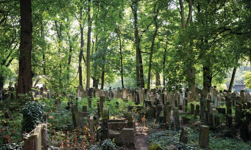 jewish-cemetery-in-krakow-poland-c-jcarillet
